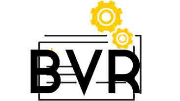 BVR ICON FOOTER16 9.jpg